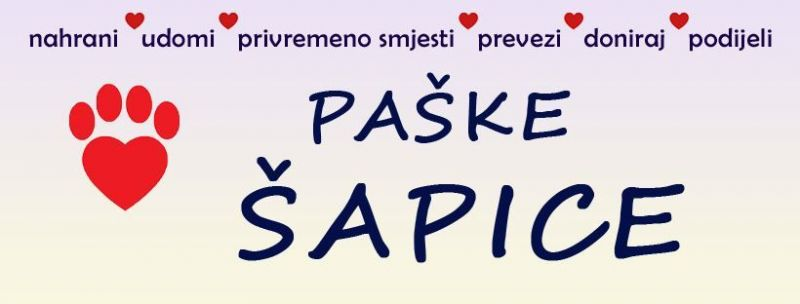 Radio-Pag-sapice2
